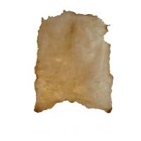 Pergament/trommeskind